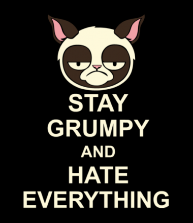 Толстовка Stay grumpy and hate everything