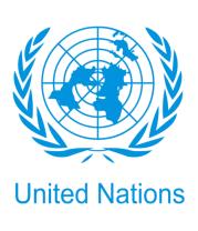 Мужская футболка с длинным рукавом Эмблема ООН