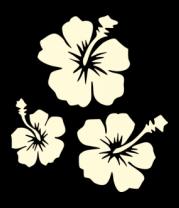 Толстовка Цветы(свет)
