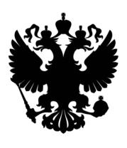 Мужская футболка с длинным рукавом Герб РФ