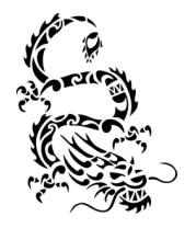 Женская майка борцовка Китайский дракон