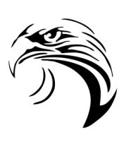 Трусы мужские боксеры Тату - взгляд орла