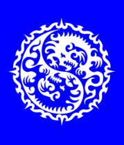 Детская футболка  Символ дракона