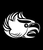 Детская футболка  Злой орел