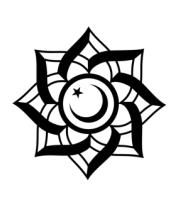 Женская футболка с длинным рукавом Полумесяц исламский символ