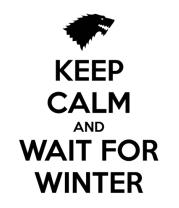 Женская футболка с длинным рукавом Wait for winter