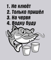 Толстовка Не клюёт... водку буду.