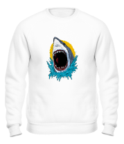 Толстовка без капюшона Wild Shark