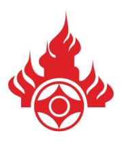 Чехол для iPhone Эмблема Российской Национальной Федерации Ояма Киокушинкай Каратэ-до