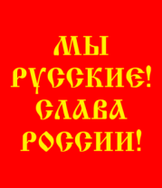 Футболка поло мужская Мы русские! Слава России!