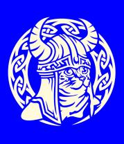 Детская футболка  Кот викинг