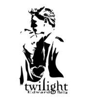 Мужская футболка с длинным рукавом Twilight