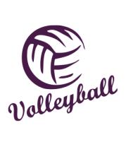 Женская майка борцовка Volleyball