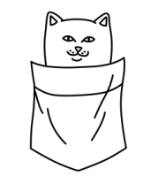 Детская футболка  Ripndip cat in pocket
