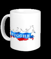 Кружка Карта России
