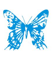 Толстовка без капюшона Бабочка
