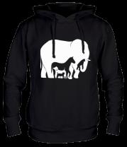 Толстовка Слон-лошадь