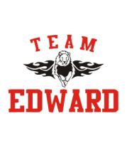 Коврик для мыши Team Edward