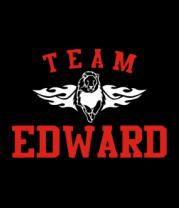 Женская футболка с длинным рукавом Team Edward