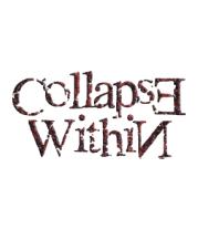 Толстовка без капюшона Collapse Within