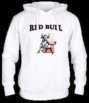 Толстовка Red Bull