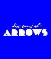 Мужская футболка с длинным рукавом The Sound Of Arrows