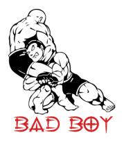 Мужская футболка  Bad boy