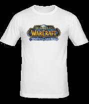 Мужская футболка  World of Warcraft Wrath of the Lich King