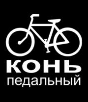 Толстовка Конь педальный