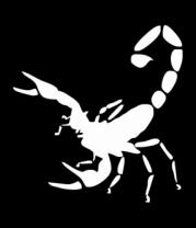 Мужская майка Scorpions