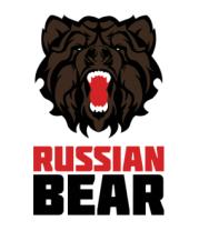Детская футболка  Russian Bear