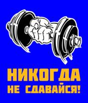 Мужская футболка с длинным рукавом Никогда не сдавайся!