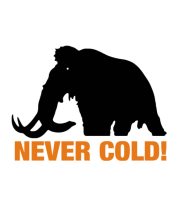 Детская футболка  Mamont never cold!
