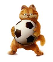 Мужская футболка  Гарфилд с мячoм