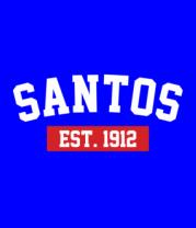 Футболка поло мужская FC Santos Est. 1912
