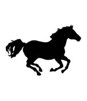 Женская майка борцовка Лошадь