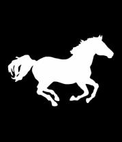 Женская футболка  Лошадь
